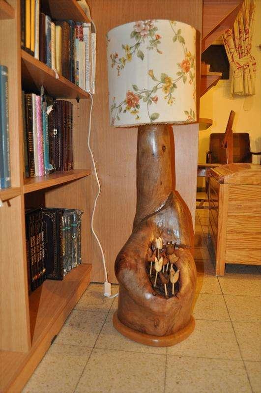 מנורה, גזע אקליפטוס וגן פרחים מעצים שונים, בנימה, חדווה